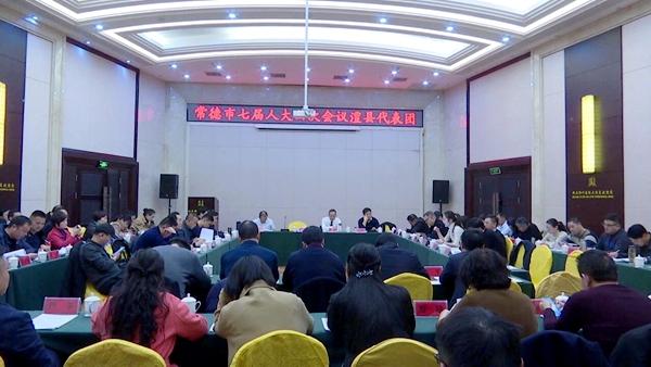 澧县代表团继续审议市政府工作报告